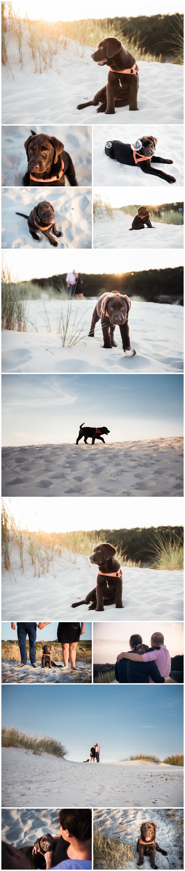 Labrador puppy familiefotoshoot in Hargen aan Zee